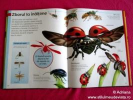 Insecte, prima mea enciclopedie