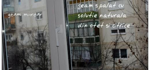geam curatat cu solutie naturala din otet si citrice