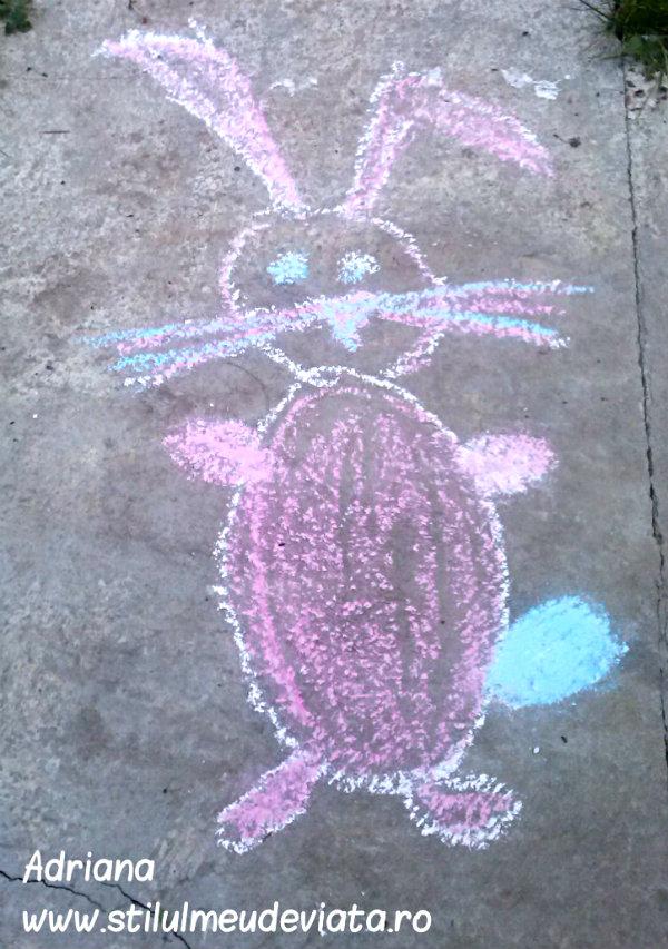 iepuras, desen pe asfalt