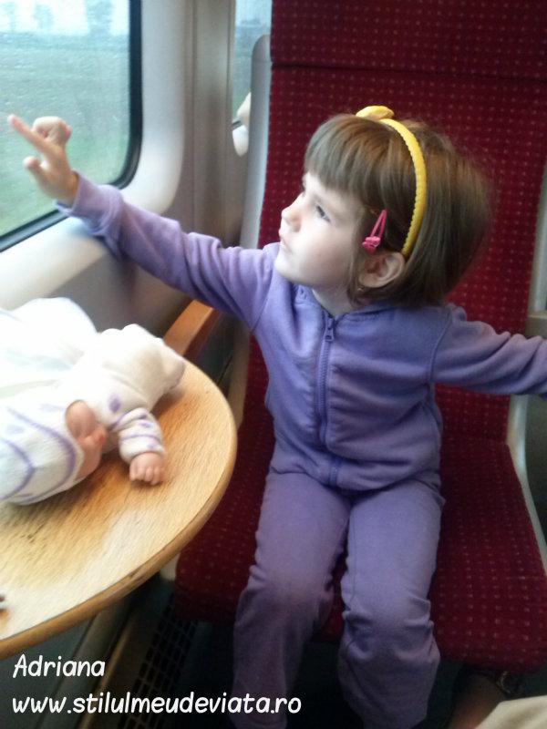 excursie cu trenul