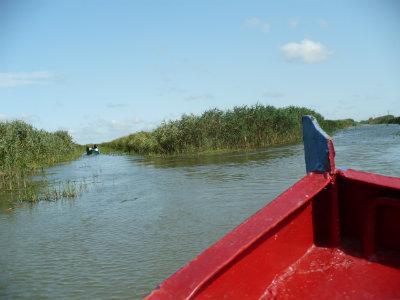plimbare cu barca in Delta Dunarii