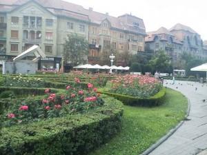 timisoara, centrul oraşului