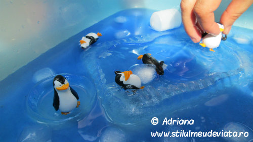 pinguinul, activitate senzoriala