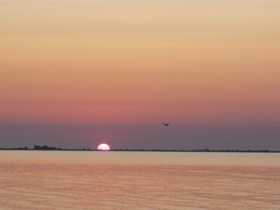 rasarit de soare in delta dunarii