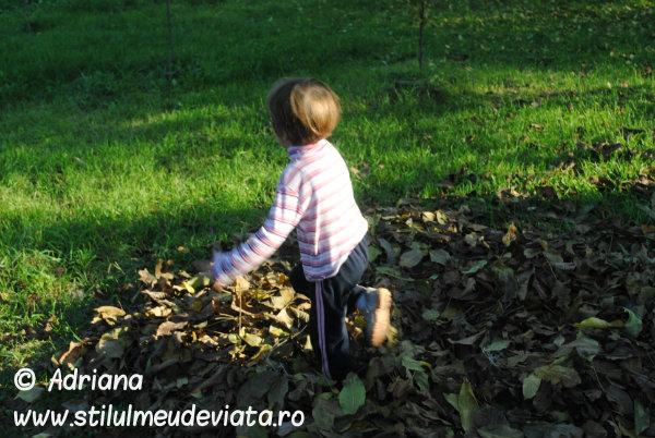 sarim in frunze
