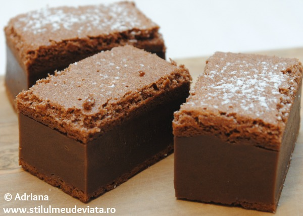 prajitura desteapta cu cacao