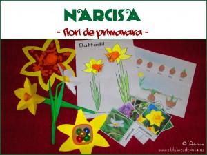 narcisa activitati pentru copii