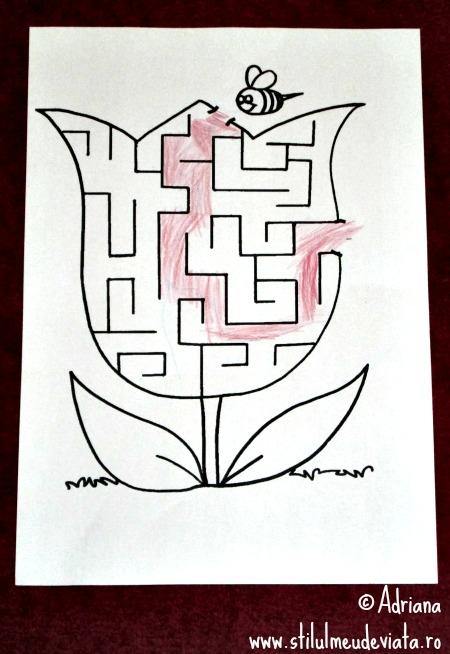 labirint albina