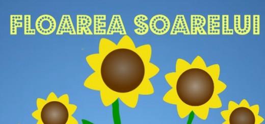 idei de activitati cu floarea soarelui