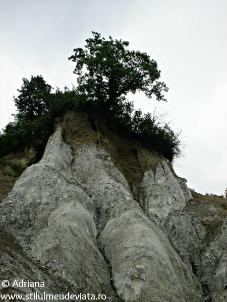 Canionul de sare din Praid