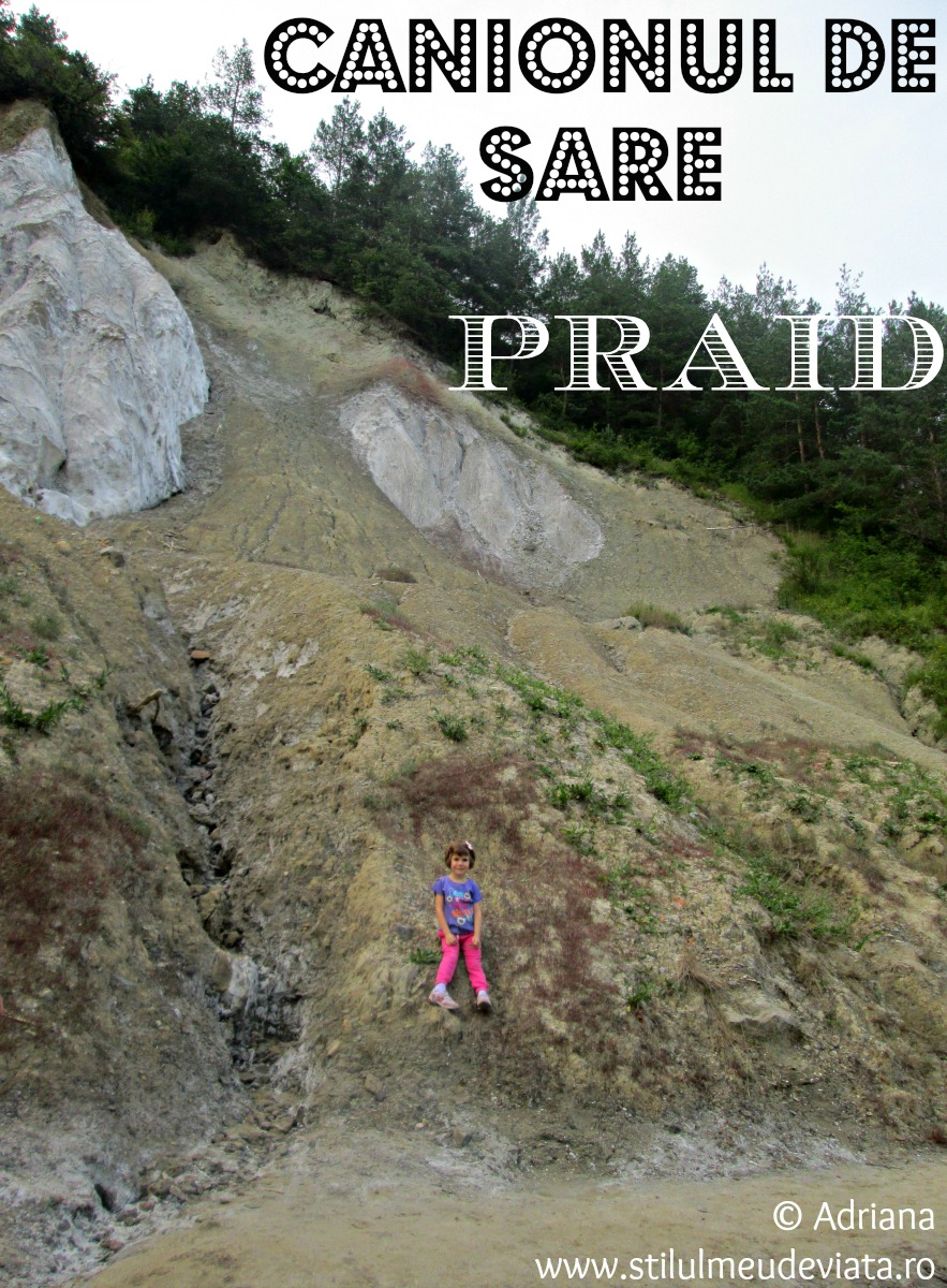 Canionul de sare Praid