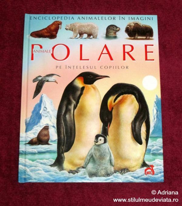 animale polare pe intelesul copiilor