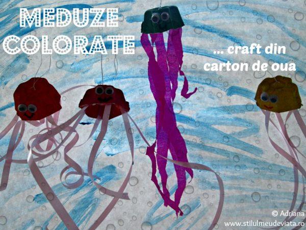 meduze colorate