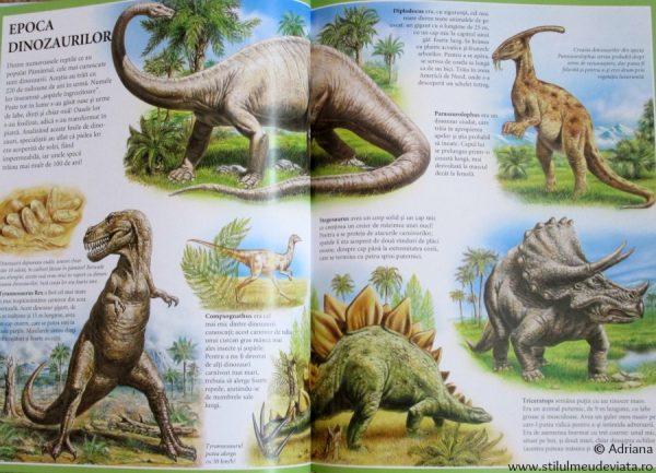 Atlasul animalelor, editura Corint Junior