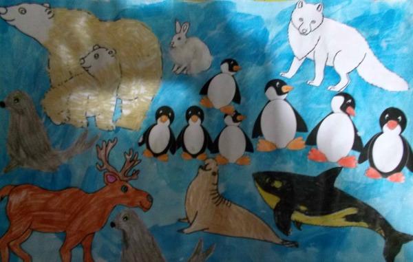 colaj animale polare