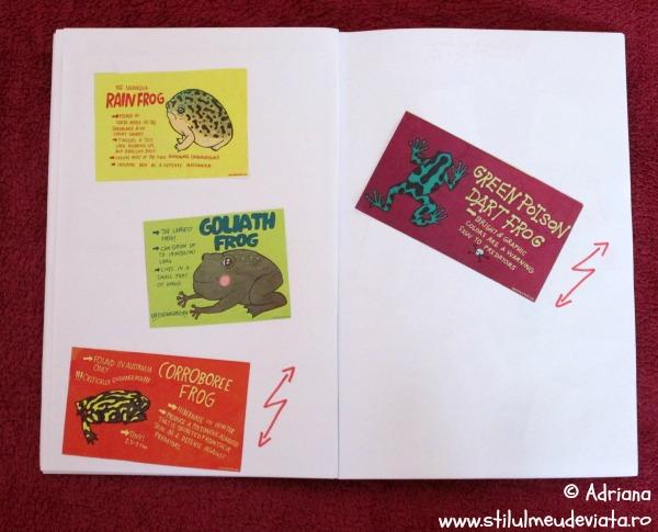 cartonase cu informatii despre specii de broaste