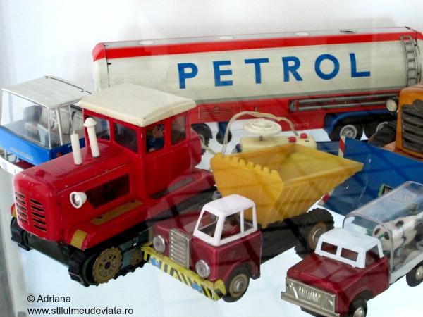 masini si camionete