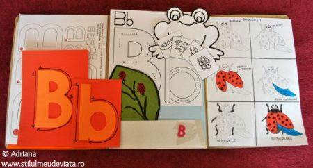 Litera B, dosar cu activități