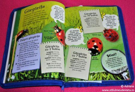 Gargarite, cartea Viata in salbaticie