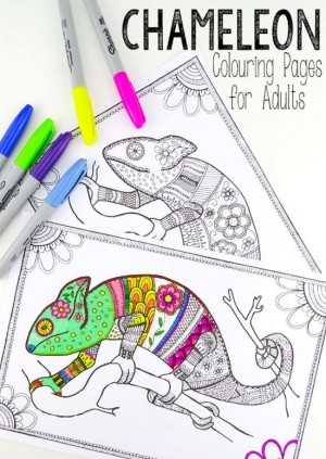Free-Printable-Cameleon-Coloring-Pages