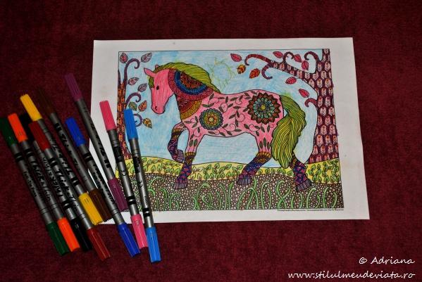 cal, fisa de colorat pentru adulti