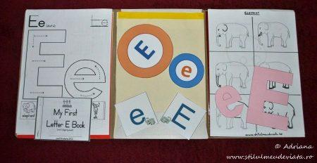 Litera E, dosar cu activități