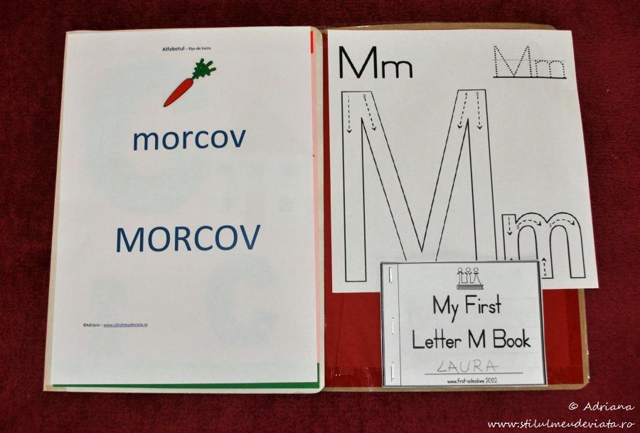 litera M - dosar cu activitati