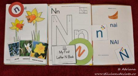 Litera N, dosar cu activități