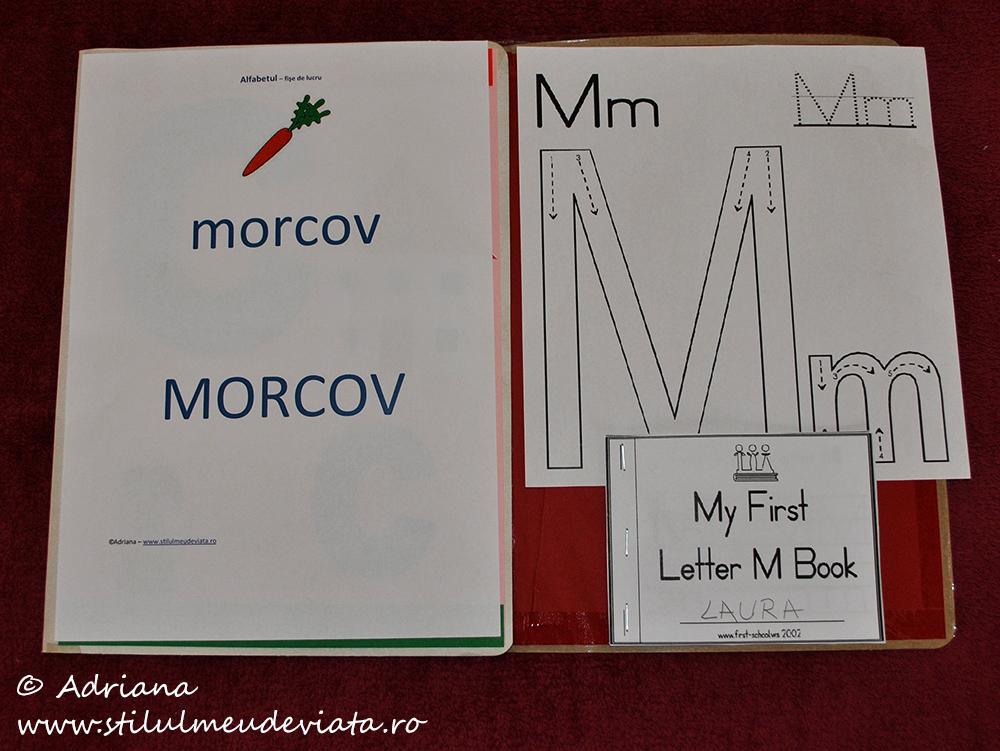 litera m, dosar cu activități