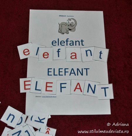 elefant, litera E