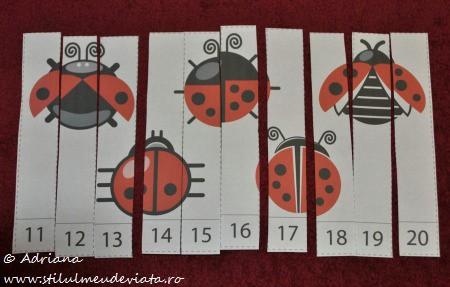 puzzle insecte (fasii numerotate de la 10 la 20)