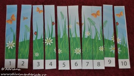 puzzle insecte (fasii numerotate de la 1 la 10)