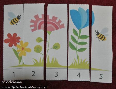 puzzle insecte (fasii numerotate de la 1 la 5)