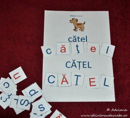 catel, litera C