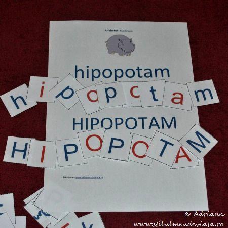 litera H, hipopotam