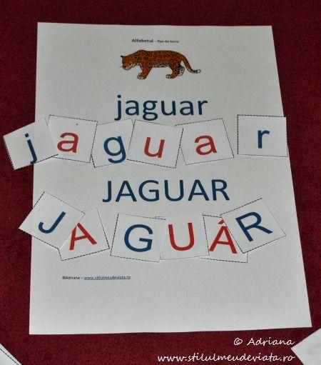 litera J, jaguar