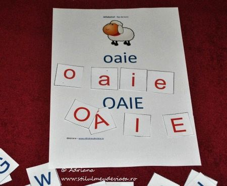 litera O, oaie