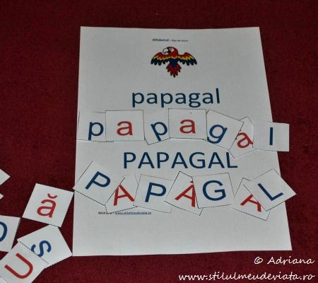 litera P, papagal