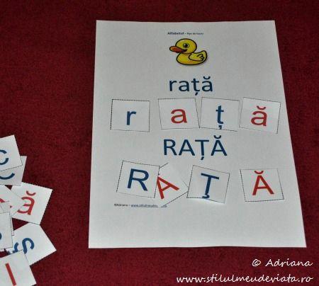 litera R, rata