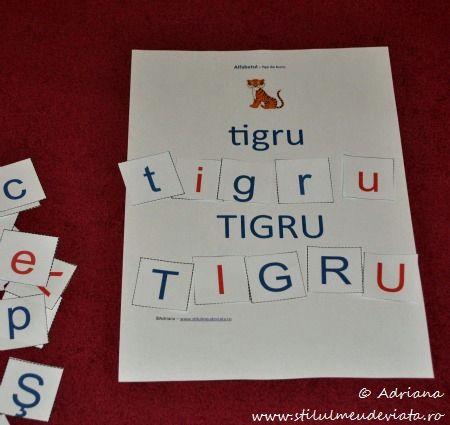 litera T, tigru