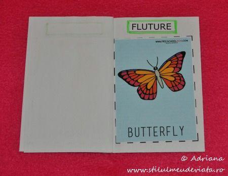 Ciclul de viata al fluturelui, FLUTURE