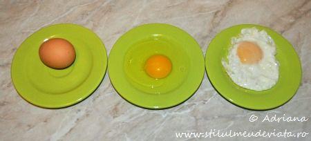 invatam despre ou