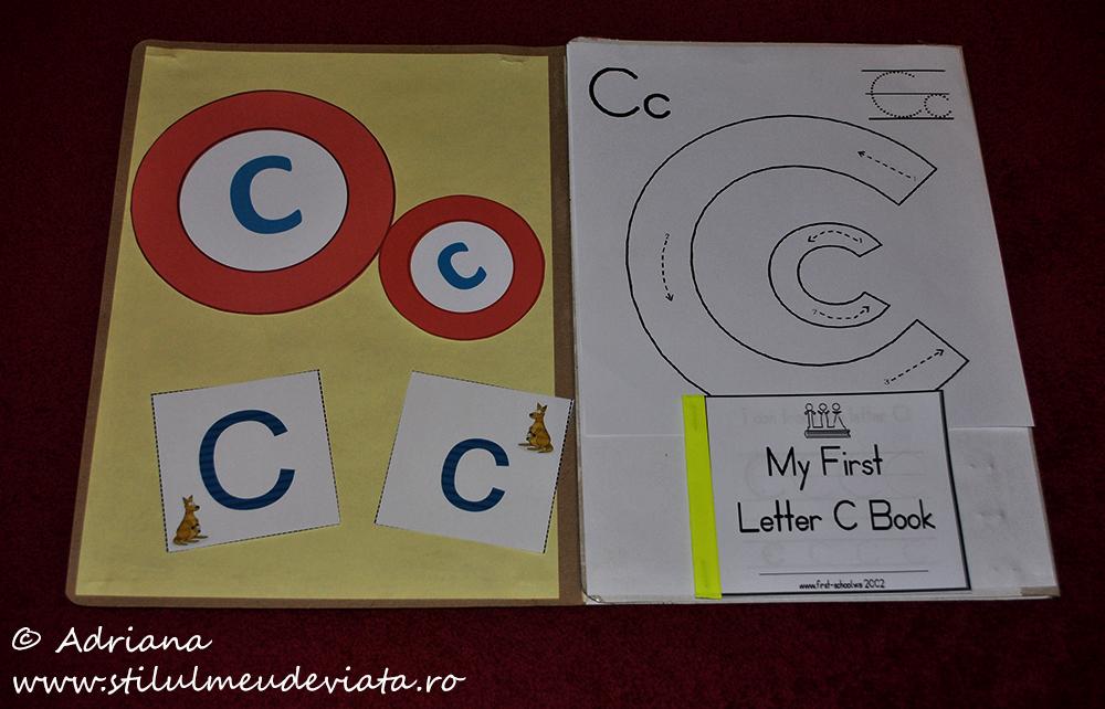 litera c, dosar cu activități