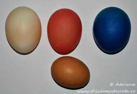 ou fara coaja, experiment pentru copii