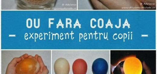 oul fara coaja, experiment pentru copii