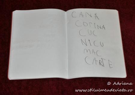 scriem cuvinte care contin litera C