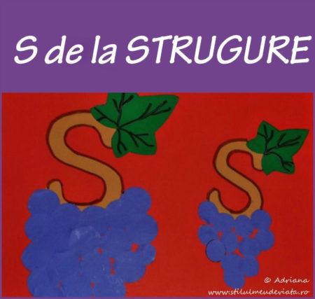 litera S de la STRUGURE - activitate practică