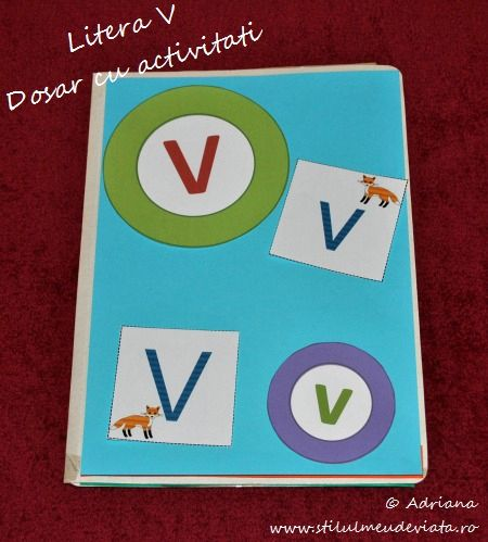 Litera V, dosar cu activitati