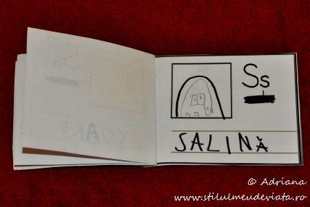 litera S de la SALINA
