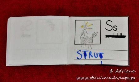 litera S de la STRUT